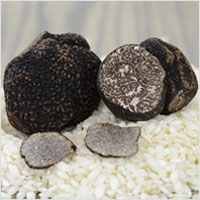 Fresh Black Winter Truffles from Italy, First Choice