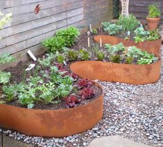 Vegetable Garden Border Ideas plates edging perennial border Top 28 Surprisingly Awesome Garden Bed Edging Ideas Railway Sleepers And Raised Bed