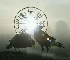 What Odin Tried To Tell Us By Huginn and Muninn Viking Ravens? Among the animal and bird kingdom in Norse mythology, ravens must be the most respected and mysterious. Because ravens were the symbol of Odin the Allfather who was the Aesir chief god. Viking Raven, Viking Warrior, Viking Woman, Viking Life, Ivar Vikings, Norse Vikings, Hugin Munin Tattoo, Panzer Tattoo, Thor