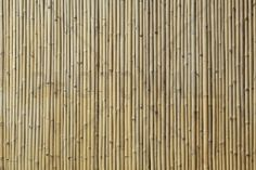 Bamboo Texture - Fotobehang