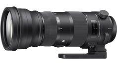 The Sigma 150-600mm f/5-6.3 DG OS HSM Sports Lens:   (B&H Photo & Video)