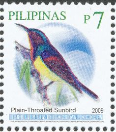 Brown-throated Sunbird stamps - mainly images - gallery format