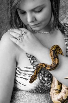 Hate the snake, love the pic! by Gray's Photography    ~My Nephew, Doug's Photography~