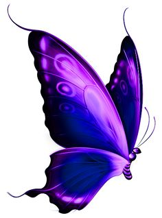 pink and purple butterfly clipart clipart panda free clipart rh pinterest com  pink and purple butterfly clipart