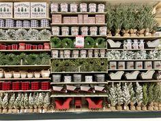 Hobby Lobby, Photo Wall, Holiday Decor, Christmas, Xmas, Photograph, Navidad, Noel, Natal