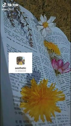 Photo Editing Vsco, Instagram Photo Editing, Instagram Snap, Instagram And Snapchat, Instagram Blog, Ideas For Instagram Photos, Creative Instagram Stories, Instagram Story Filters, Instagram Story Ideas