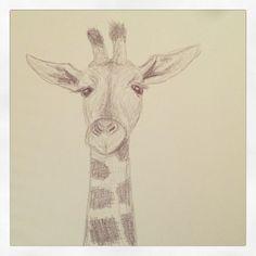 Sketch: Giraffe.
