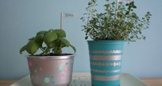 Reuse Your Yogurt Containers: Easy DIY Planters | Homesessive