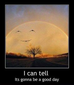 I Can Tell It's Gonna Be A Good Day - Funny Memes. The Funniest Memes worldwide for Birthdays, School, Cats, and Dank Memes - Meme Funny Cute, The Funny, Hilarious, Funny Happy, Gabe The Dog, Haha, Funny Memes, Jokes, Just For Laughs