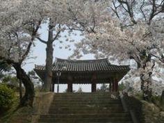 Namsan Park (Naju) - Seoul, South Korea