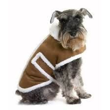 These are dog Products that we believe is Special and worth inclusion within this dog accessories category << DogSiteWorld-Store... The #1 Leading Online Pet Supplies Store...