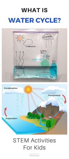 Water cycle in a bag What Is Water Cycle For Kids - Simple Science Experiment - STEM Water Cycle Craft, Water Cycle For Kids, Water Cycle Project, Water Cycle Activities, Water Cycle Game, Science Experiments Kids, Science Fair, Science Lessons, Science Education