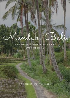 The Most Scenic Place I've ever been to: Munduk on Bali!