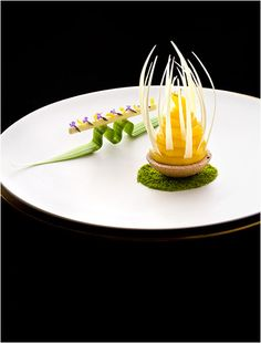 Yukawatan-Noriyuki Hamada © Richard Haughton Source by cjascott Dessert Design, Food Design, Food Decoration, Eclairs, Culinary Arts, Culinary Chef, Molecular Gastronomy, Plated Desserts, Creative Food