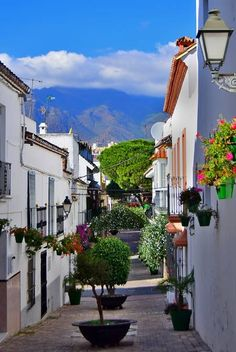 SPAIN / ANDALUSIA / Places, towns and villages of Andalusia - Estepona, Costa del Sol, Málaga