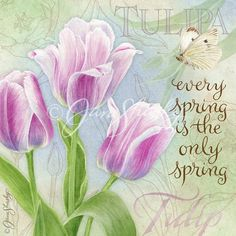 3/17/16 Gail: Spring is near! Hope this quote brings a bit of spring your way today. Toni❤️