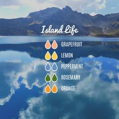 Island Life Essential Oil Diffuser Blend