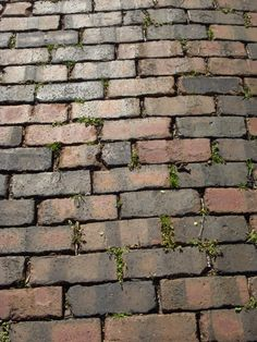 I've always loved cobblestone, and would love a cobblestone driveway