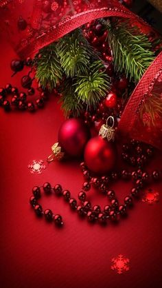 Merry Christmas and Happy Holidays to everyone on TOC! Noel Christmas, Green Christmas, Christmas Wishes, Christmas Colors, Winter Christmas, All Things Christmas, Christmas Wreaths, Xmas, Christmas Ornaments