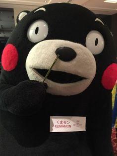 くまモン活動日誌 | くまモンオフィシャルサイト