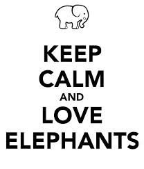 I love elephants