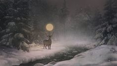 Winter in magical wood by OlgaWilson on DeviantArt