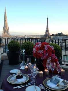 On the Terrasse of the Penthouse...surrounded by Jeff's flowers and overlooking the Eiffel Tower...