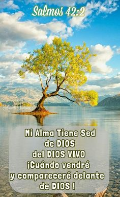 Salmos, 42:2 - Mi alma tuvo sed de Dios, del Dios vivo. ¡Cuándo vendré, y compareceré delante de Dios!