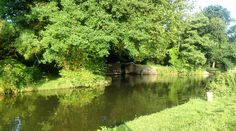 Bowers Lock this morning. Think it's going to be another scorched! #riverwey #Guildford