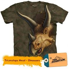 Triceratops heads - T-shirt enfant dinosaure - The Mountain Dinosaur Toys For Kids, The Good Dinosaur, World Famous Artists, Big Face, Oeko Tex 100, Kids Backpacks, Detailed Image, T Rex, Wearable Art