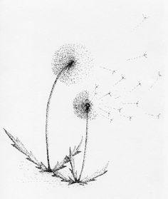 The Complete Dandelion Series by JanetAndersonArt on Etsy, $8.50