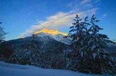 Monte d'Oru... de l'or !