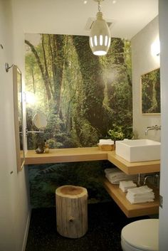 Bring the outdoors in, like this bathroom mural, with different wall paper designs!