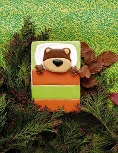 Grizzly on a Campout from 100 Animal Cookie Book by thebearfootbaker.com