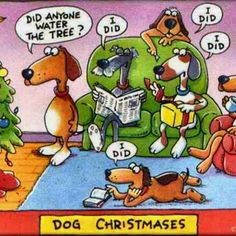 Did anyone water the tree? Dogs really enjoy Christmas