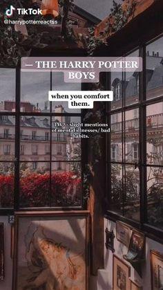 Harry Potter Preferences, Harry Potter Imagines, Harry Potter Stories, Harry Potter Feels, Harry Potter Jokes, Harry Potter Pictures, Harry Potter Universal, Harry Potter Fandom, Harry Potter Characters