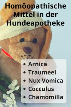 Liste homöopathischer Mittel die in keiner Hundeapotheke fehlen sollten: #Arnica, #Traumeel, #NuxVomica, #Cocculus, #Chamomilla #homöopathischeMittel #Hunde