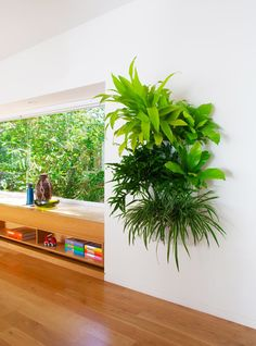 Well known for their soft-sided vertical garden wall pockets, Woolly Pocket is back with their latest design, Living Wall Planter. The indoor/outdoor planter is made of a sturdy hard shell with its own self-watering tank with holes to distribute water to the roots when necessary.