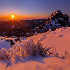 A stunning snowy sunset captured from The Cathedral at Mt Buffalo in Victoria's See High Country region. During winter, the hectare Mount Buffalo. Perth, Brisbane, Visit Australia, Melbourne Australia, Land Of Oz, Destinations, Cross Country Skiing, Creative Pictures, Winter Pictures