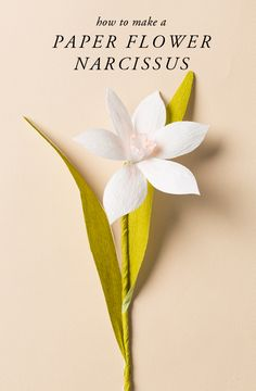 How to make a paper flower naricissus (The House That Lars Built)