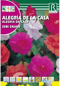 Egynyári virágok : Vízifukszia Plants, Female Dwarf, Plant, Planets
