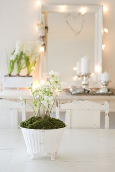 Gorgeous white dining room decoration with Hyacinths