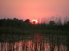 Sunset in Okovango Delta by On The Go Tours, via Flickr