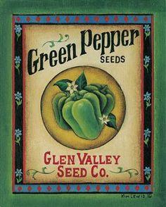 green pepper seeds- Kim Lewis