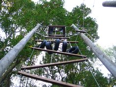 Image result for vertical ropes course Ropes Course, Utility Pole, Image, Park, Ideas, Parks, Thoughts