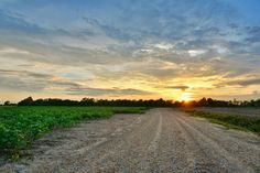 Flat Out Delta - Photography of the Mississippi Delta Photo Keywords: mississippi photography