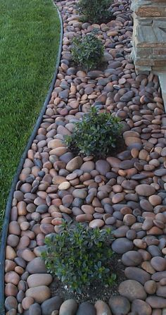 Another landscape look for places where we don't want grass. I usually don't like rock as much as bark, but I do like the rive rock look here.