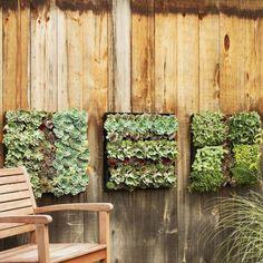 Small Garden Ideas garden and wall art all at the same time.