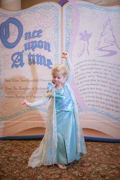 Disney princess birthday party photo backdrop