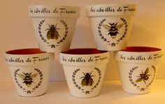 Terracotta Bee pots (postage included in price)